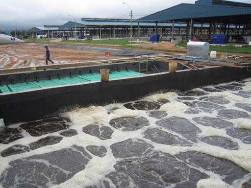 Các doanh nghiệp phải tốn khoản chi phí khá lớn để xử lý nước thải thủy sản