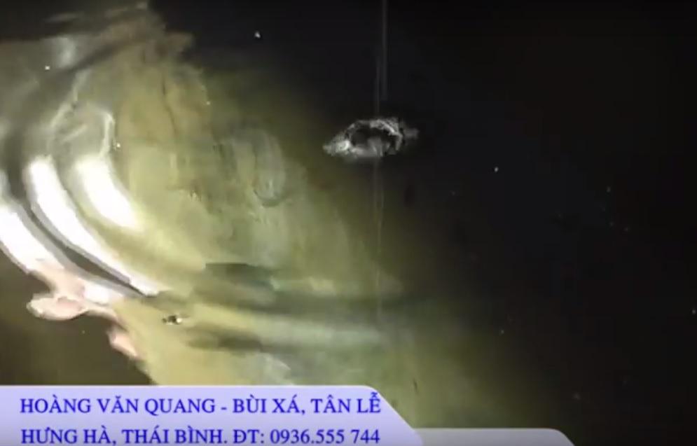 Hệ thống MET của gia đình ông Hoàng Văn Quang