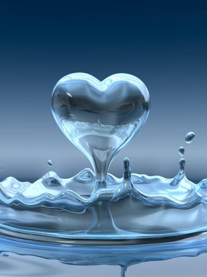 Vai trò của nước