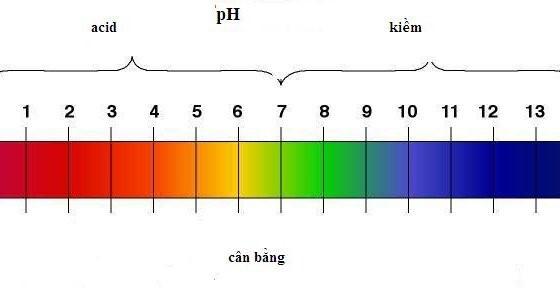 đo ph của nước