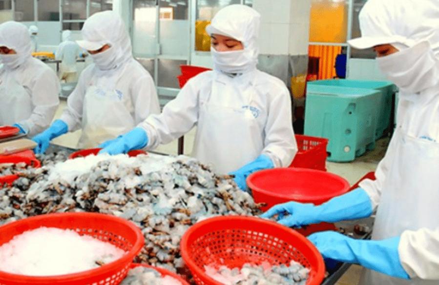 công nhân chế biến thủy sản