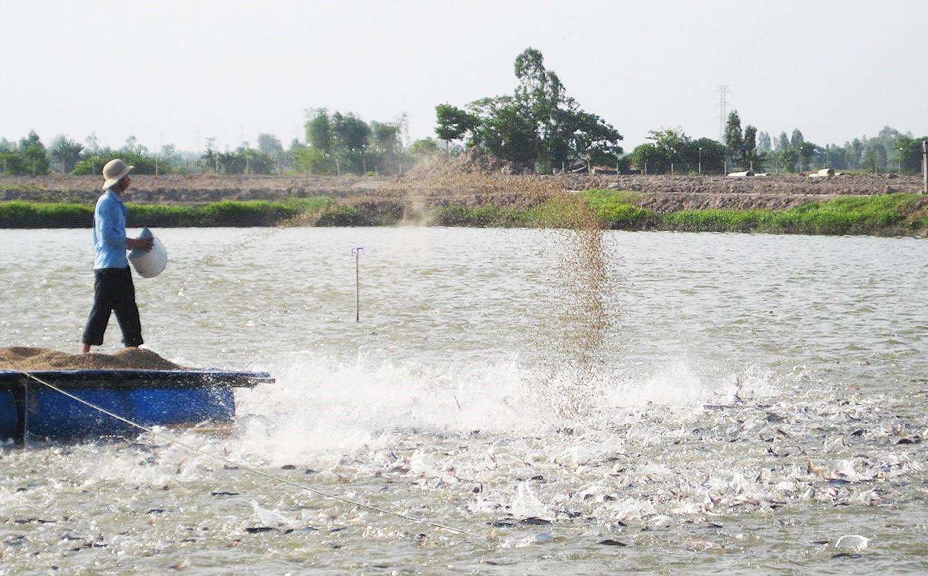 tính chất nước thải thủy sản