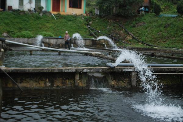 xử lýnguồn nước thải sinh hoạt