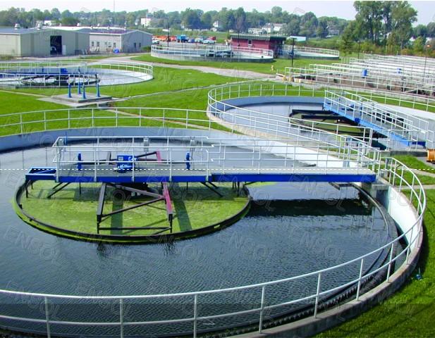các chủng vi sinh vật trong xử lý nước thái