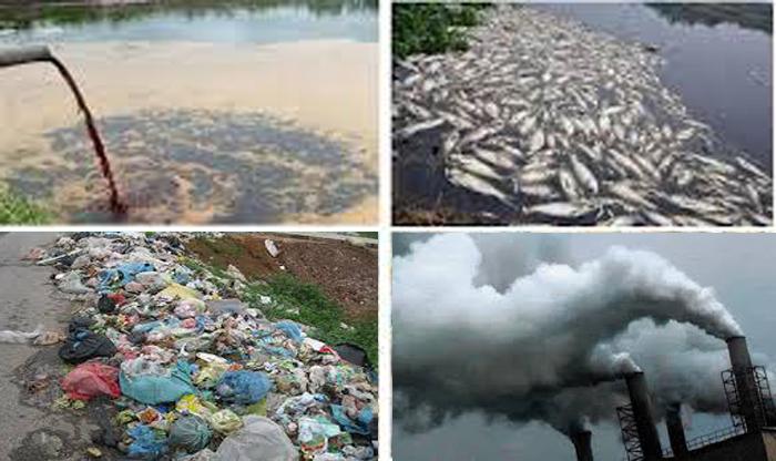 môi trường bị tác động nặng nề