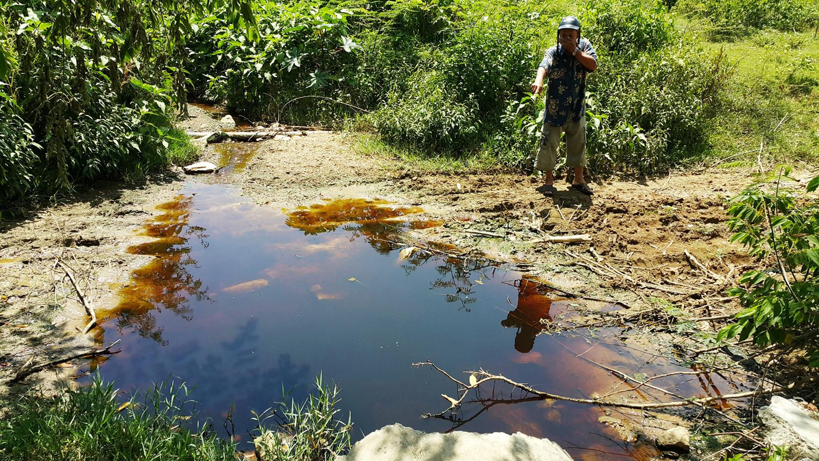 Xử lý nước rỉ rác bằng phương pháp sinh học có thực sự hiệu quả không.