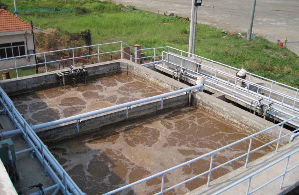 Công nghệ xử lý nước thải bằng vi sinh vật như thế nào