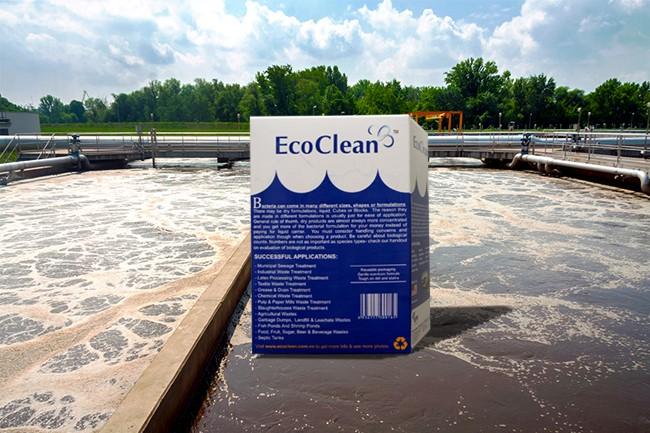 Chế phẩm men vi sinh xử lý nước thải