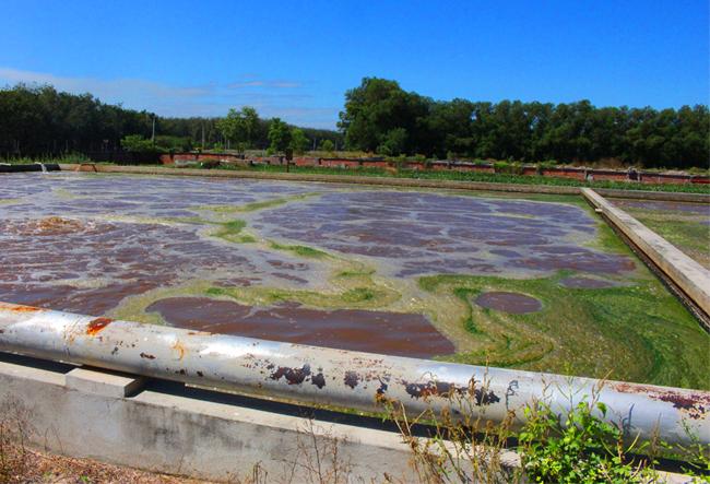 Nước thải cao su thiên nhiên