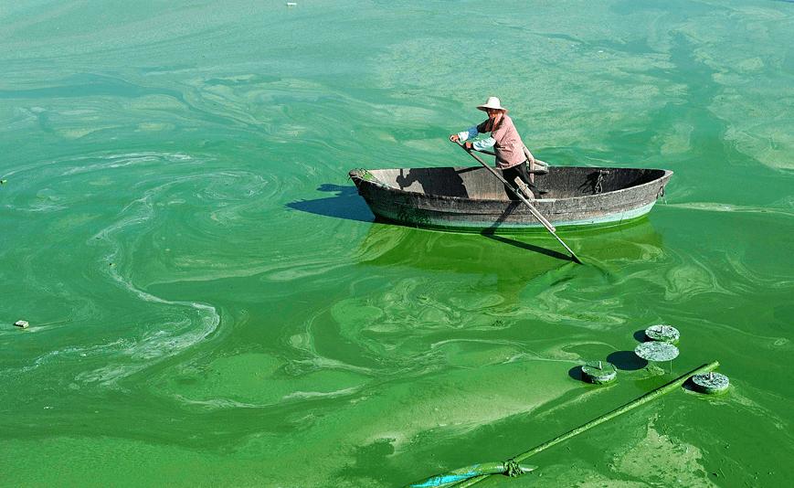Nước thải chứa nito và photpho