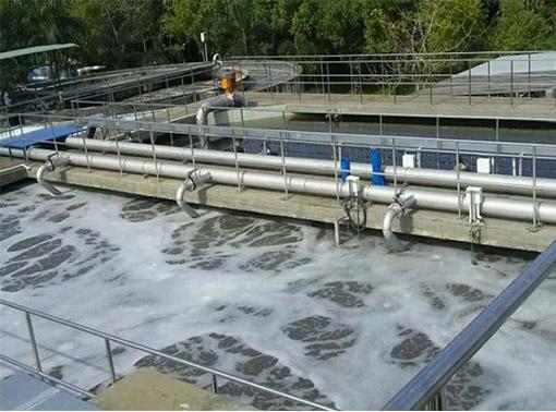 Chế phẩm vi sinh xử lý nước thải một giải pháp đáng lưu tâm