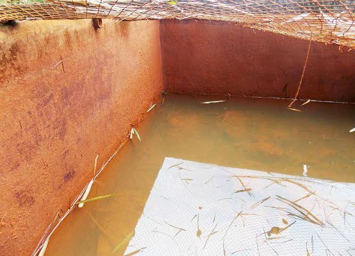 Nước giếng khoan nhiễm mặn