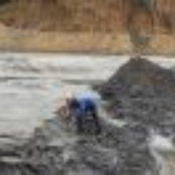 Bùn thải từ hệ thống xử lý nước thải