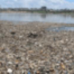 Nước thải rỉ rác