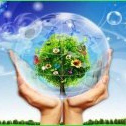 Xử lý môi trường