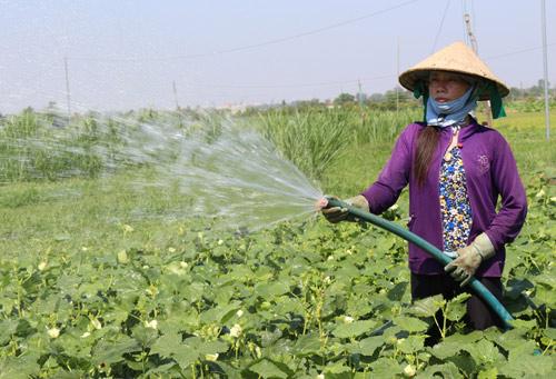 Nước cho sản xuất công nghiệp