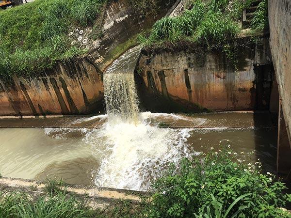 xử lý nước thải giàu nito
