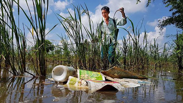 Ôi nhiễm môi trường nước với thực vật