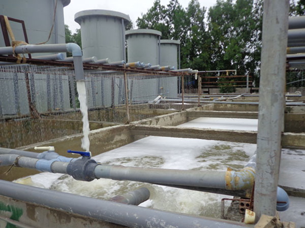Nhà máy chế biến sữa